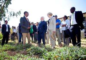 Pictured is President Michael D Higgins and his wife Sabina with Dr Haile Tesfay, Project Co-ordinator for the International Potato Centre on a visit to the Damayno School, at the school's orange flesh sweet potato plot, where farming methods are thought to the pupils in Tigray, Ethiopia on the sixth day of the Presidents 22 day official visit to Ethiopia, Malawi and South Africa.Photo Chris Bellew /  Fennell Photography 2014