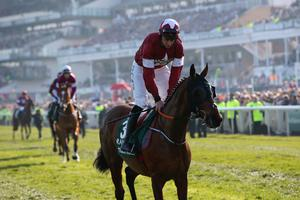 Daryl Russell riding Tiger Roll at the Randox Health Grand National Handicap Chase at Aintree Racecourse on April 06, 2019 in Liverpool, England. (Photo by Alex Livesey/Getty Images)