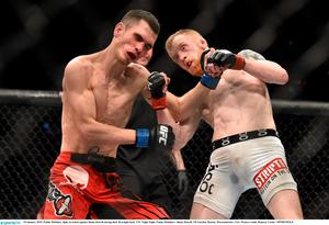 Holohan, right, in action against Shane Howell