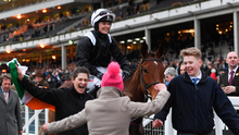 GREAT DAY: Katie Walsh is led into the winner's enclosure at Cheltenham after victory aboard Relegate in the 2018 Bumper. Photo by Ramsey Cardy/Sportsfile