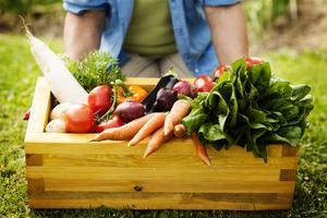 Diarmuid Gavin's top tip for growing your own veg.  Stock image.