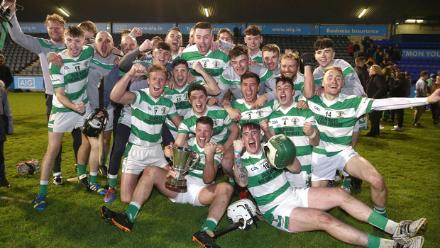 Players from Round Tower Clondalkin celebrate their Dublin IHC success.