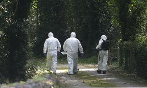 PSNI forensic officers examine a laneway leading to the home of Kevin Lunney in Kilawley, Co Fermanagh. Photo: Damien Eagers / INM
