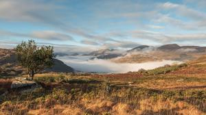 An image of Killarney National Park taken by Peter O'Toole. Photo: Valerie O'Sullivan