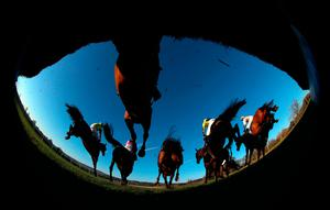 Runners and riders gallop away from a fence during the novice handicap chase at Chepstow yesterday. Photo: David Davies/PA Wire