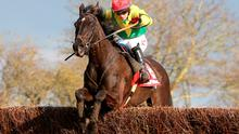 Goonyella ridden by Jonathan Burke jump the last to win the Betfred Midlands Grand National at Uttoxeter