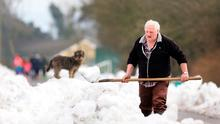 Billy Cardiff is watched by Duke the dog as he clears the road outside his home in Taghmon, Co Wexford. Photo: Gerry Mooney