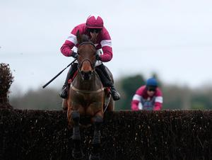 Valseur Lido will not run at Cheltenham after suffering injury. Photo by Alan Crowhurst/Getty Images