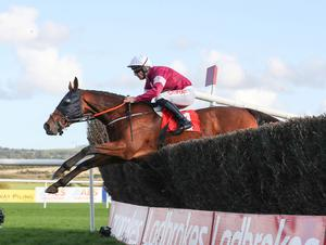 Horse Racing Ireland have cancelled all meetings amid the current coronavirus crisis. Pic: Caroline Norris
