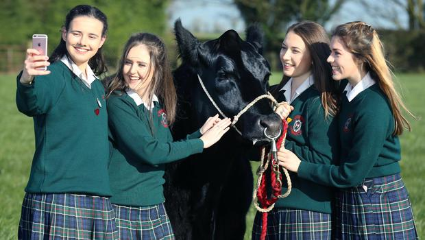 Emily Browne, Tara Frehill, Shauna Jager and Eithne Murray from Our Lady's School, Terenure. Picture: Finbarr O'Rourke.