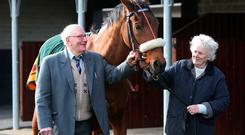 Westerners Son, with Connie Cleary (right), granddaughter of the 1916 winning trainer Dick Cleary, and Johnny Lynn (89), son of 1916 Irish Grand National winning jockey Jack Lynn. Photo: Damien Eagers