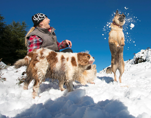 Hill walker Teresa Kelly playing in the snow with her German Shepard 'Bella' at Brown Mountain, Aughrim, Co Wicklow Photo: Michael Kelly