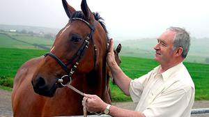 Joe Walsh pats a mare at Clonakilty Agricultural College. Photo Fergal O'Gorman