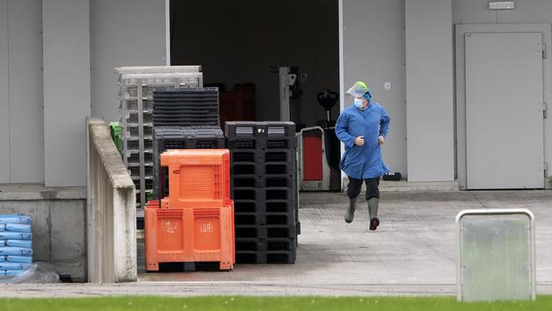 Safety precautions: The O'Brien Fine Foods factory in Timahoe, Co Kildare, which shut down after 80 workers tested positive for Covid-19. Photo: Colin Keegan