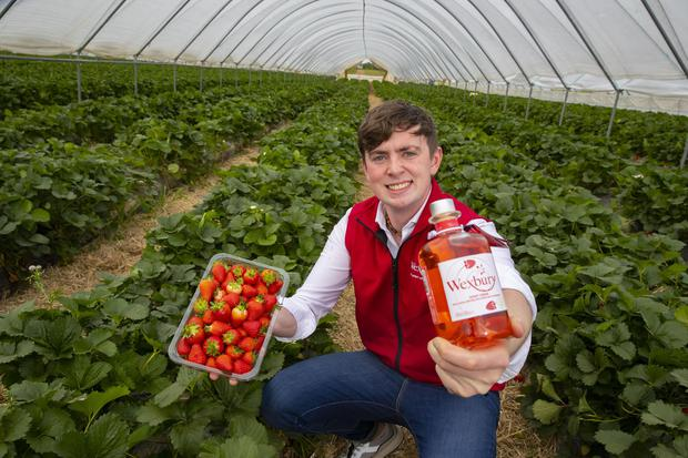 Mark Kavanagh, from Davidstown, Co Wexford, with his strawberry vodka. Photo: Patrick Browne