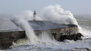 Surveys conducted after named storms show increases in awareness and action, weather forecasters said