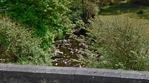 Tragedy: Folly River in Armagh close to where Mr Teggart passed away