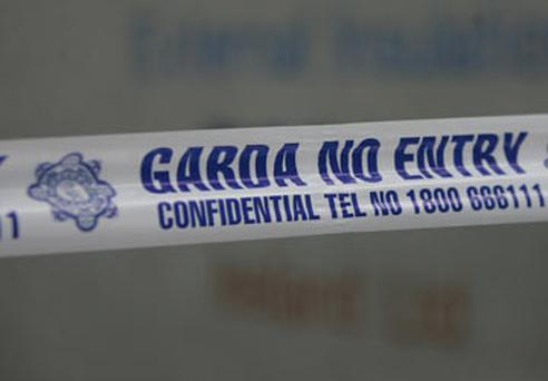 A number of uniformed and plain-clothes gardai sealed off the area