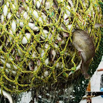 Irish fishermen have warned that a European ban on dumping dead fish at sea is the wrong tactic