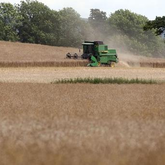 Government maps used to process EU funding for farmers contained mistakes, the agriculture minister said