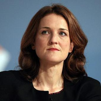 Theresa Villiers said she was seeking to address concerns that have been made with regards to dual mandates