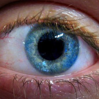 The number of people suffering from sight loss is forecast to rise to 272,000 by the year 2020