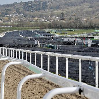 Covers on the course to protect it from the bad weather that is forecast, at Cheltenham Racecourse