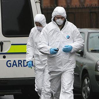 Garda forensic officers after remains thought to be human were discovered