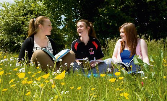 Castleisland Community College students Niamh O'Connell, Aoife Nolan and Chloe Kelliher getting in some last minute study while enjoying real summer weather conditions in Co Kerry yesterday.