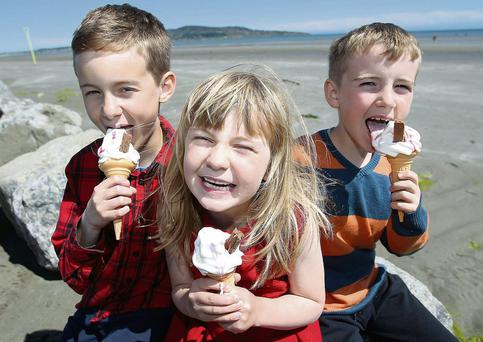 Ria Glynn (6), from Clontarf, with her brothers Ronan (10) and Colman (8), on Dollymount Strand