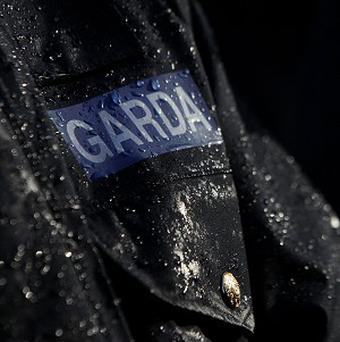 A 31-year-old man is being questioned over a sex attack in Dublin