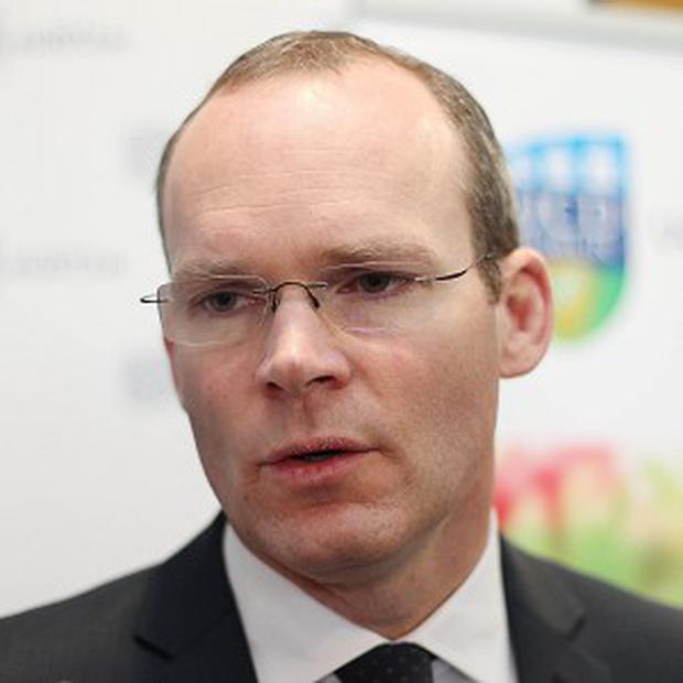 Simon Coveney said the Government will focus on creating a new company to develop commercial bio-energy and forestry interests