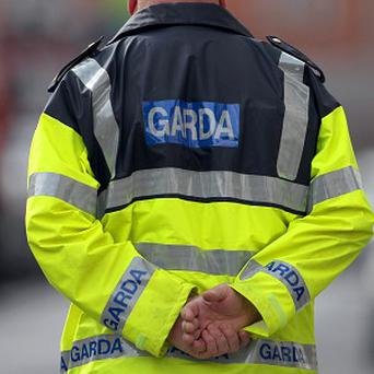 Gardai have released a 26-year-old man without charge after he was arrested over the murders of a woman and her young daughter