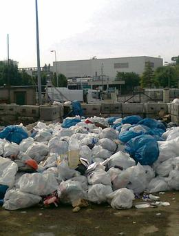 Bags of litter collected after a clean-up of beaches in the Fingal County Council area last weekend