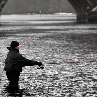 Some 406,000 people went fishing in Ireland last year and spent about 555 million euro