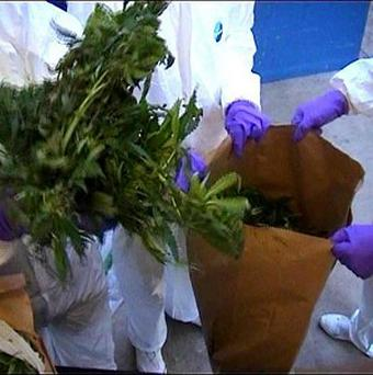 Drugs with a street value of around half a million euro have been seized in a wave of raids across Dublin