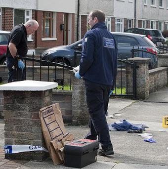 Two members of the Garda Forensic team at Hillcrest Park in the Glasnevin area of north Dublin