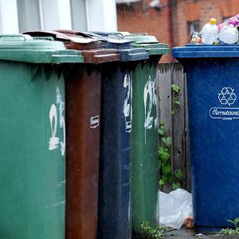 Moynalty in Co Meath has been crowned Ireland's Tidiest Town