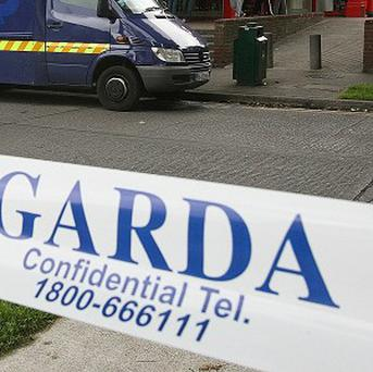 A cyber crime scam is using the logo for An Garda Siochana to con money.