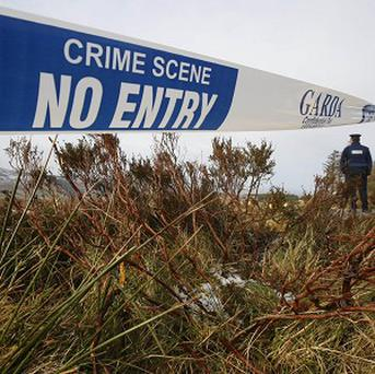 Gardai are investigating an alleged sex attack on two girls