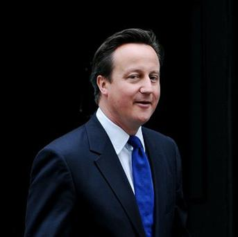 David Cameron said there was no plans for an amnesty