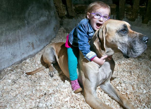 Brianna Lynch (3) with her dog, Charlie