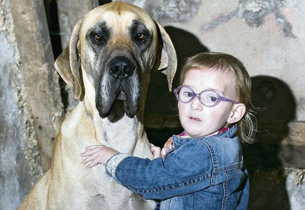 Brianna Lynch, who suffers from epilepsy, pictured with her dog Charlie
