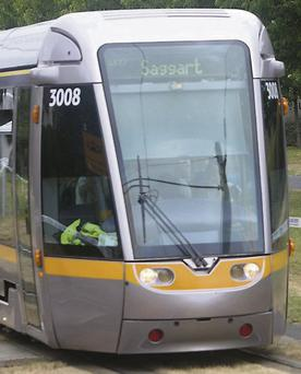 The dog was killed in a 'freak' Luas accident