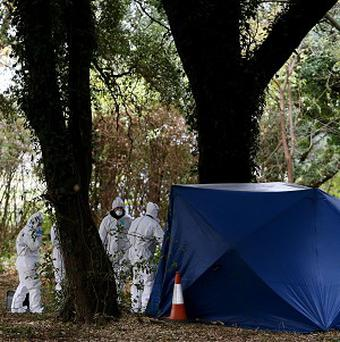 Members of the Technical Bureau Crime Scene Investigations unit at the scene in Phoenix Park in Dublin, where the body of a man has been found