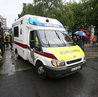 A woman died from her injuries after paramedics cut her free from the wreckage after a tree fell on her car, near Mullingar in Co Westmeath