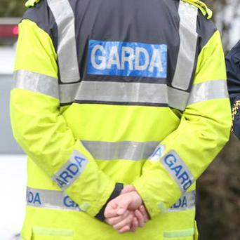 Gardai are investigating after a man in his 30s was killed when his car plunged into a lake in Co Roscommon