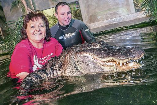 Josephine Fitzgerald with James Hennessy and 'Battle' the alligator at Reptile Village in Kilkenny. Pat Moore