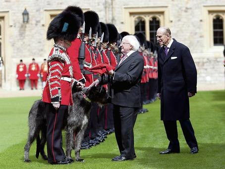 President Higgins presents a coat to the Irish Guards' wolfhound Domhnall, with Prince Philip, at Windsor Castle