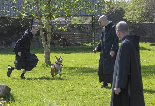 Brother Elijah, Brother Finian and Brother Mark Kirby with their dog Hilda in Silverstream Priory, Stamullen, Co Meath